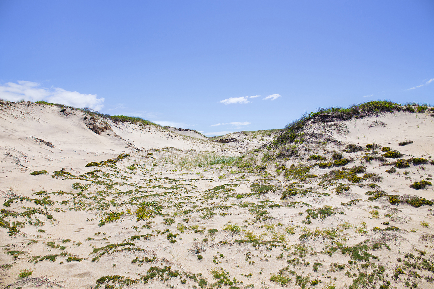 Landscape Photography Montauk Beach Sand Hill