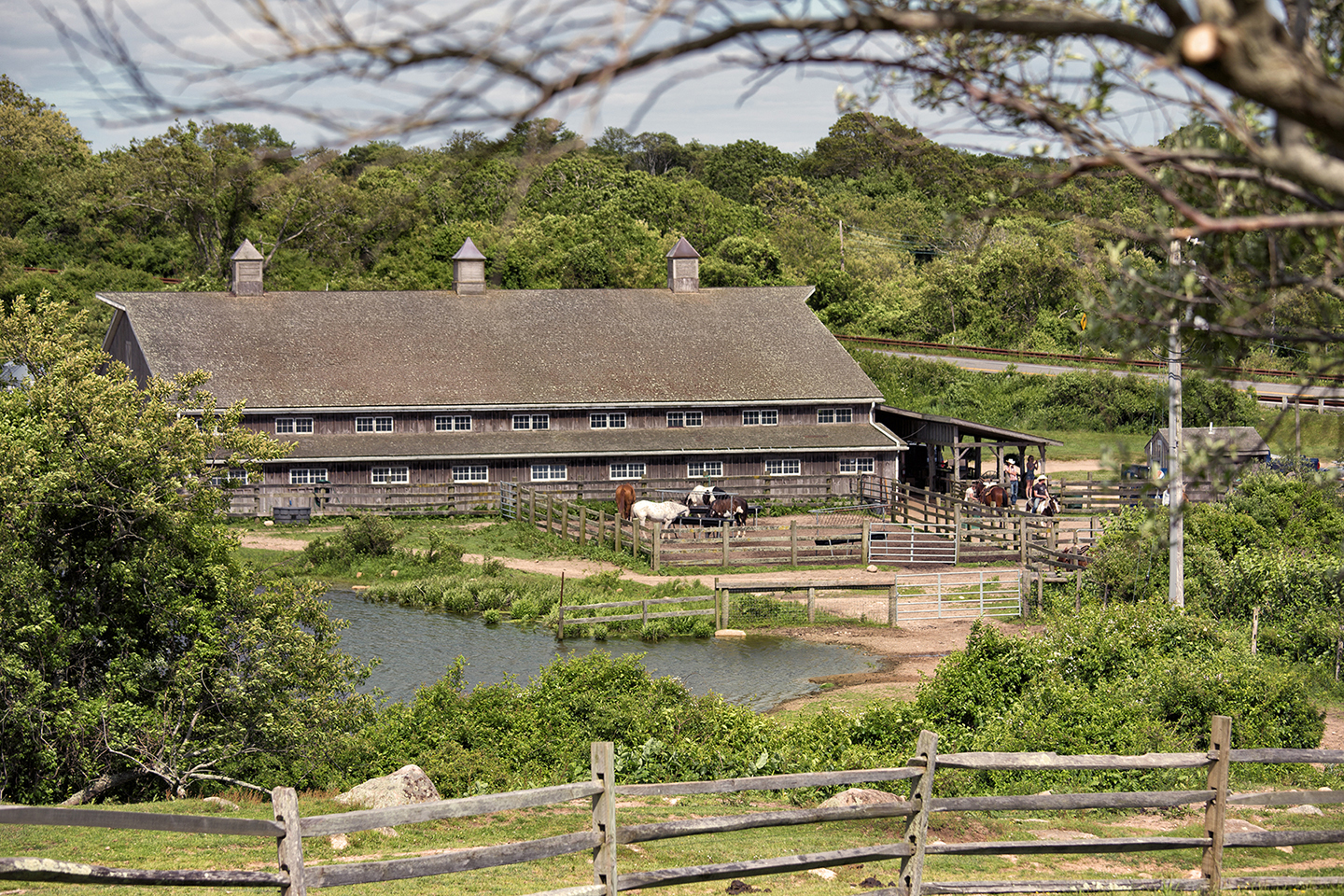 Landscape Photography Montauk Horse Ranch