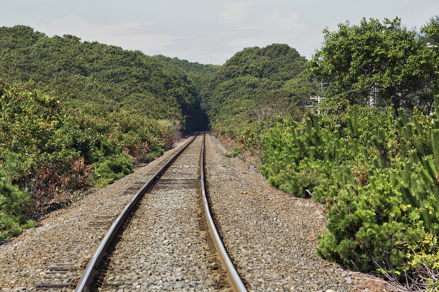 Landscape Photography Montauk Train Rail
